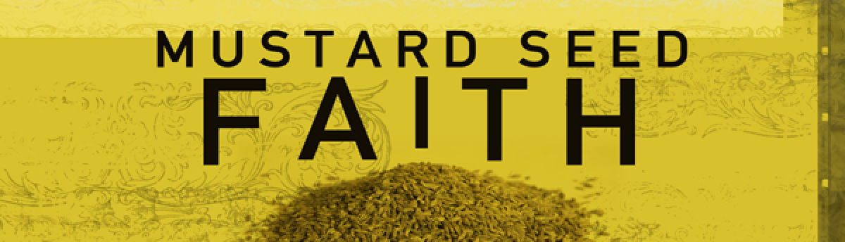 Mustard Seed Consulting